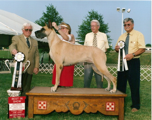 Tori at 7 years old going BIS veteran at the International shows in June 2005